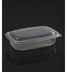 HINGED LID TRANSPARENT MICROWAVE CONTAINER ΟΚ600 ONDIPACK