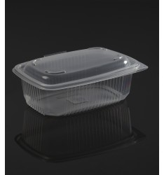 HINGED LID TRANSPARENT MICROWAVE CONTAINER ΟΚ800 ONDIPACK