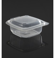 HINGED LID TRANSPARENT MICROWAVE CONTAINER ΟΚ251 ONDIPACK