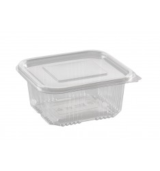 RECTANGULAR 500cc HINGED LID PET CONTAINER